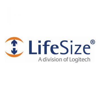 LifeSize